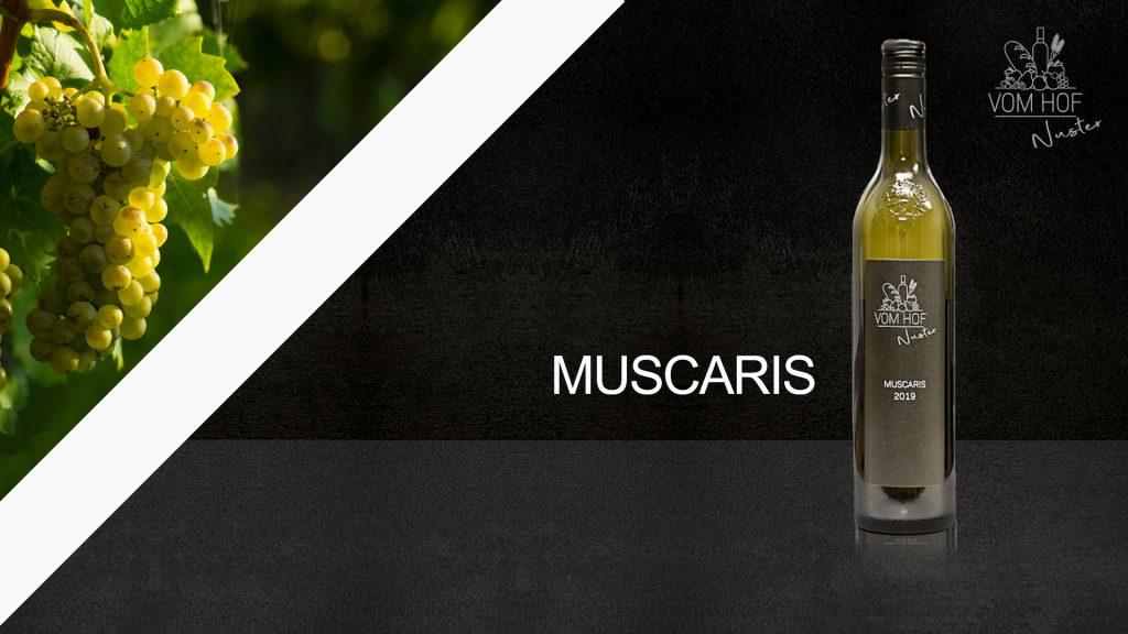 Muscaris Wein